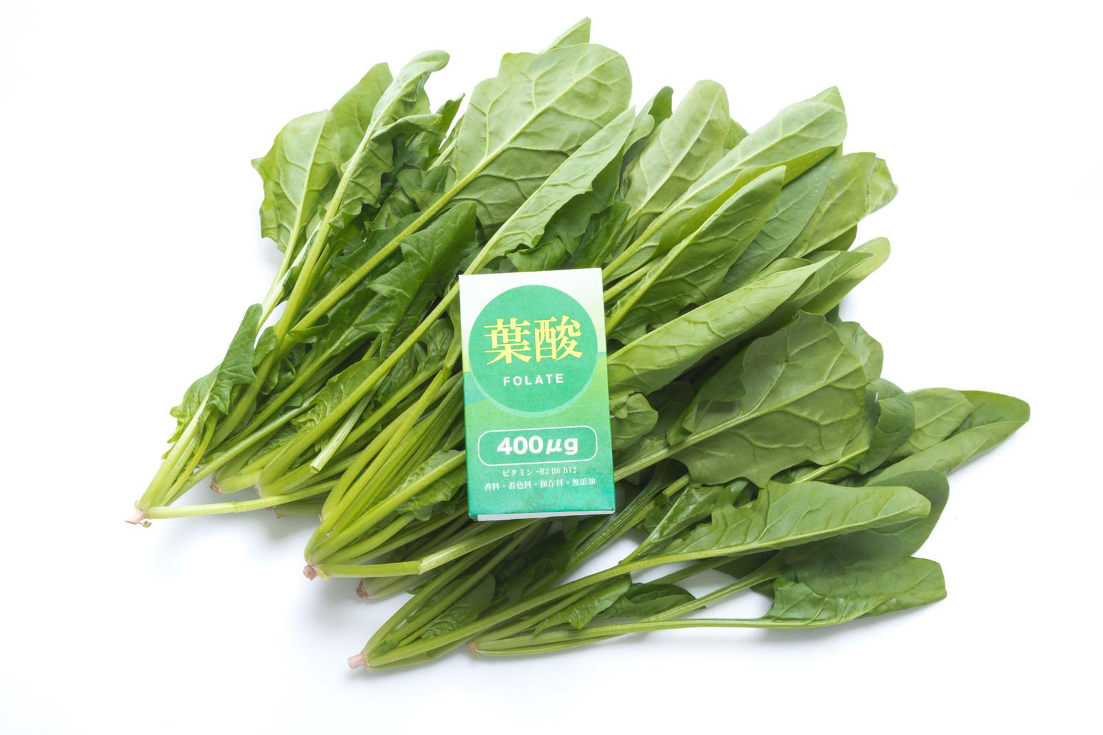 「ほうれん草から葉酸を摂取 | 写真の無料素材・フリー素材 - ぱくたそ」の写真