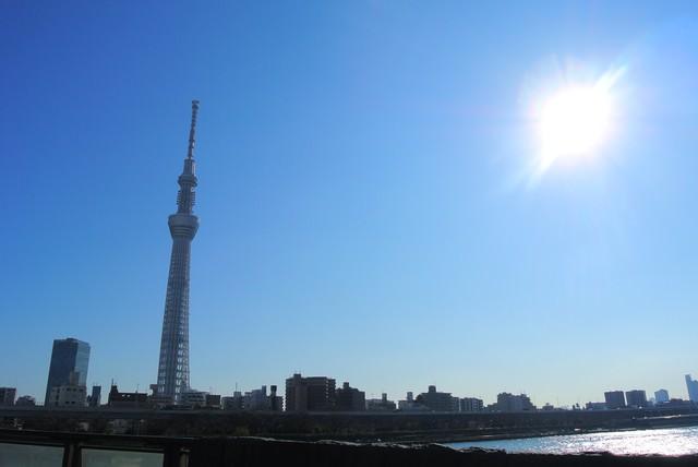 太陽とスカイツリーの写真