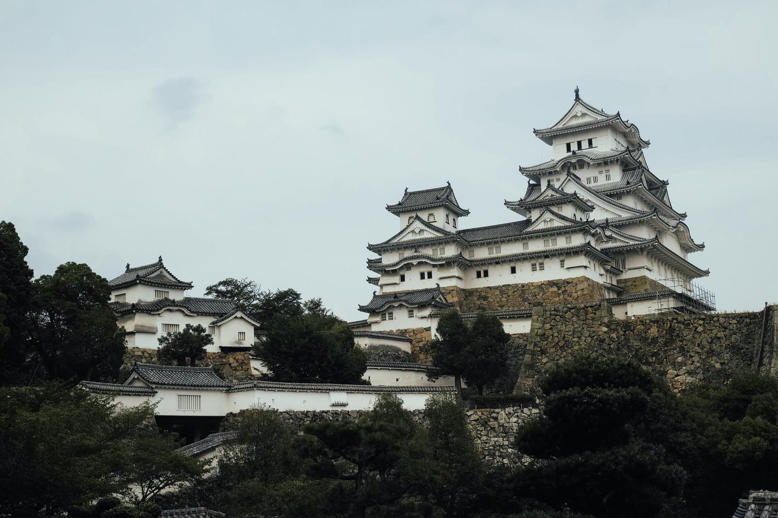 「日本の城跡(姫路城)」の写真