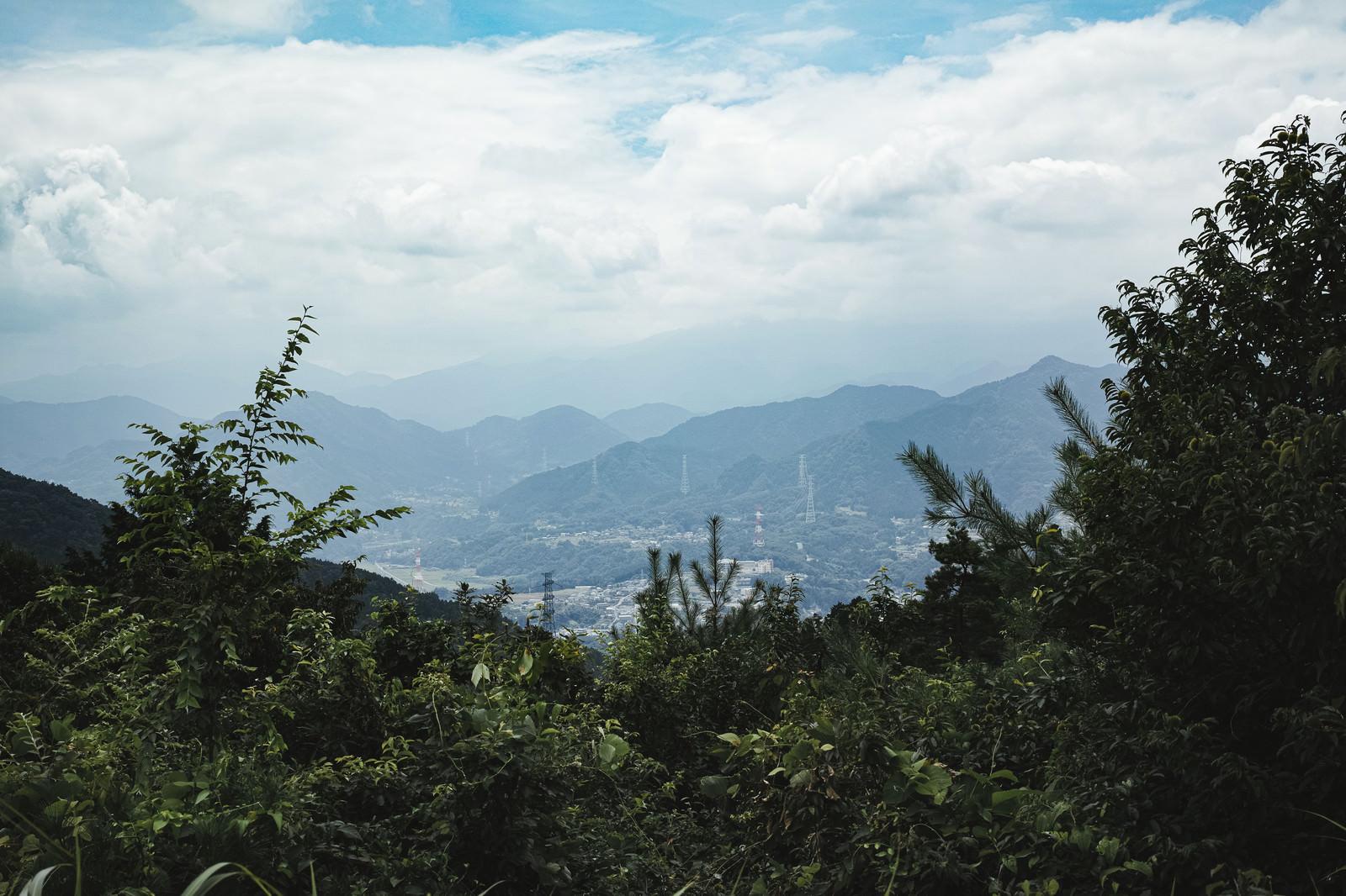 「森の中から見える山間の町並み」の写真