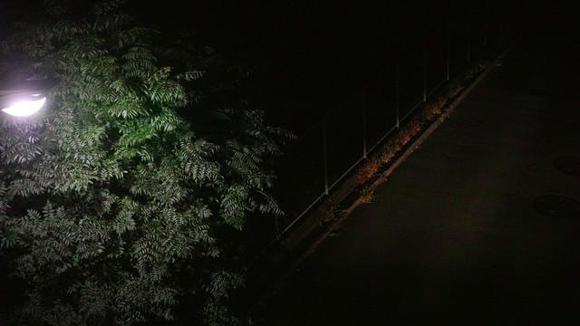 暗がりの夜道の写真