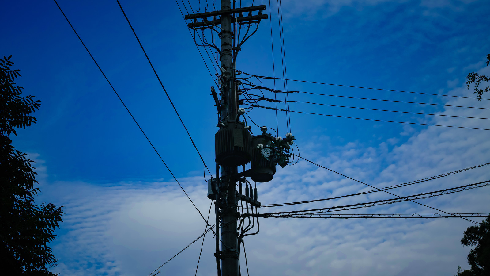 「青空と電柱上部に設置された柱上変圧器」の写真