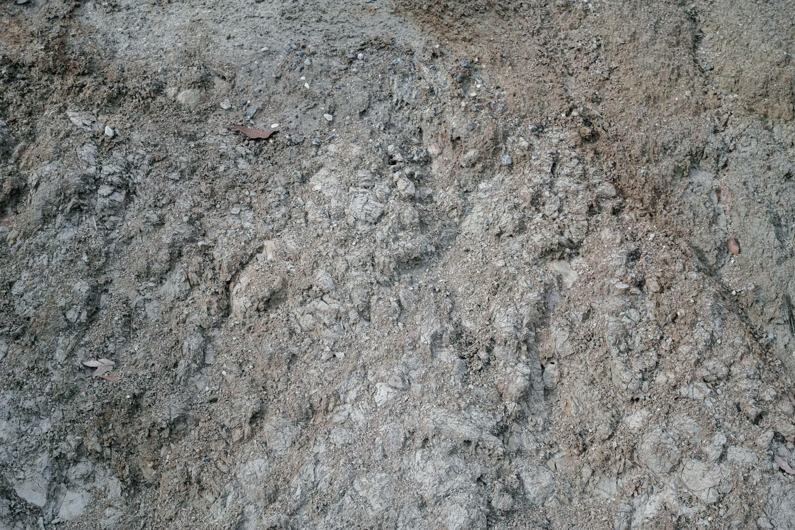 「不揃いな石が埋もれた地面(テクスチャ)」の写真