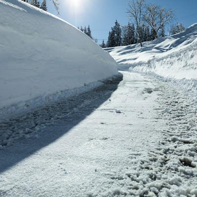 除雪した雪の壁の写真