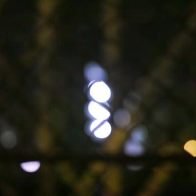 フェンスの向こうの写真