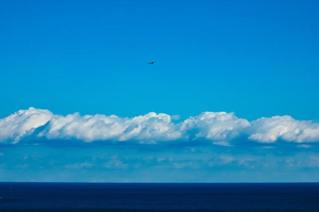 真っ青な海と空との間に伸びる水平線の写真