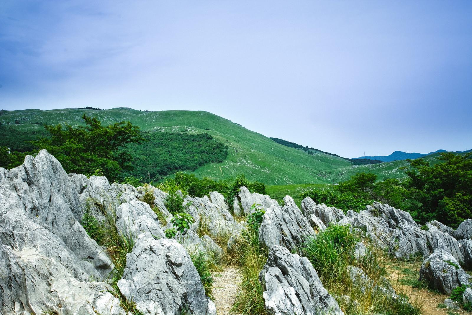 「ごつごつとした岩の間に立ち、眺めるカルスト台地」の写真