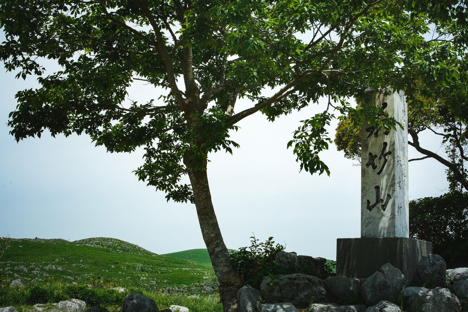 「枝に隠れた若竹山山頂の石碑(山口県美祢市)」の写真
