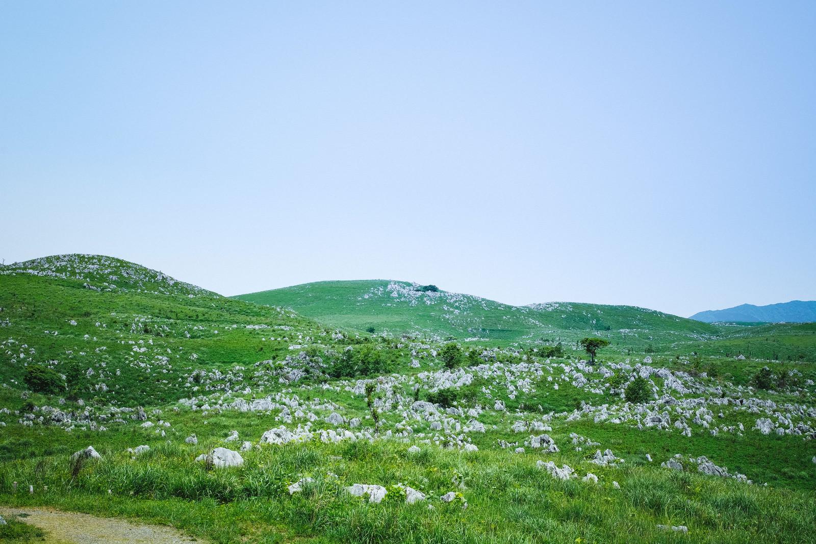 「果てしなく続く雄大なカルスト台地(山口県美祢市)」の写真