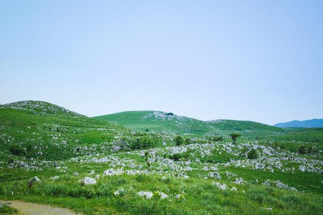 果てしなく続く雄大なカルスト台地(山口県美祢市)の写真