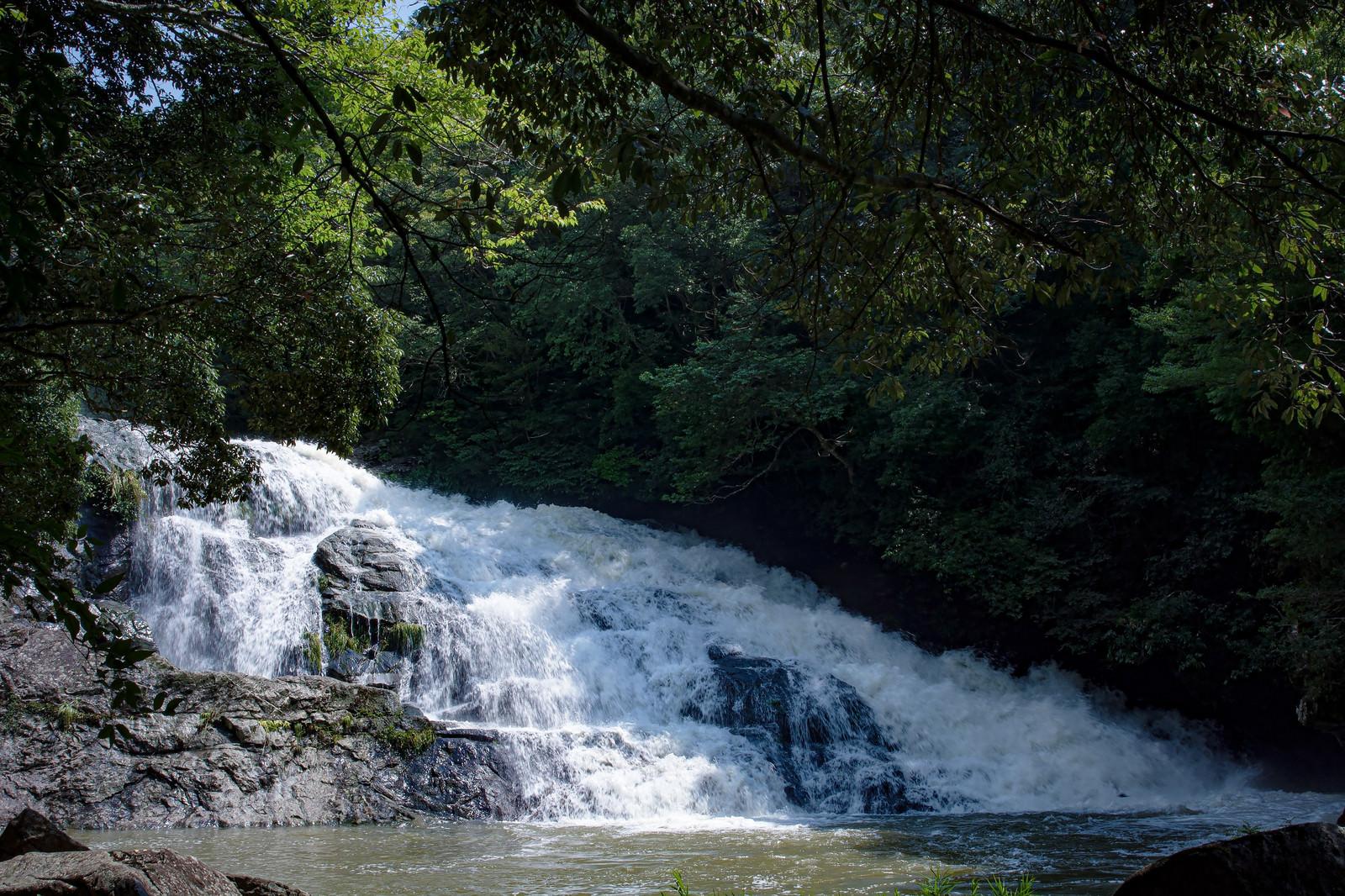 「増水して荒ぶる二畳ヶ滝(愛知県豊田市)」の写真