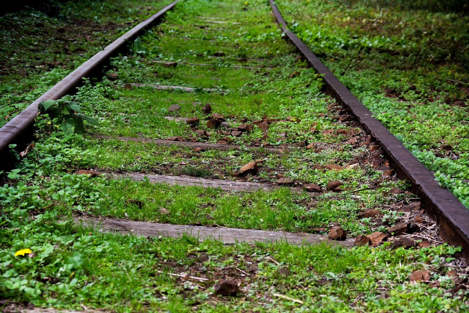 「今はもう使われていない廃線跡」の写真