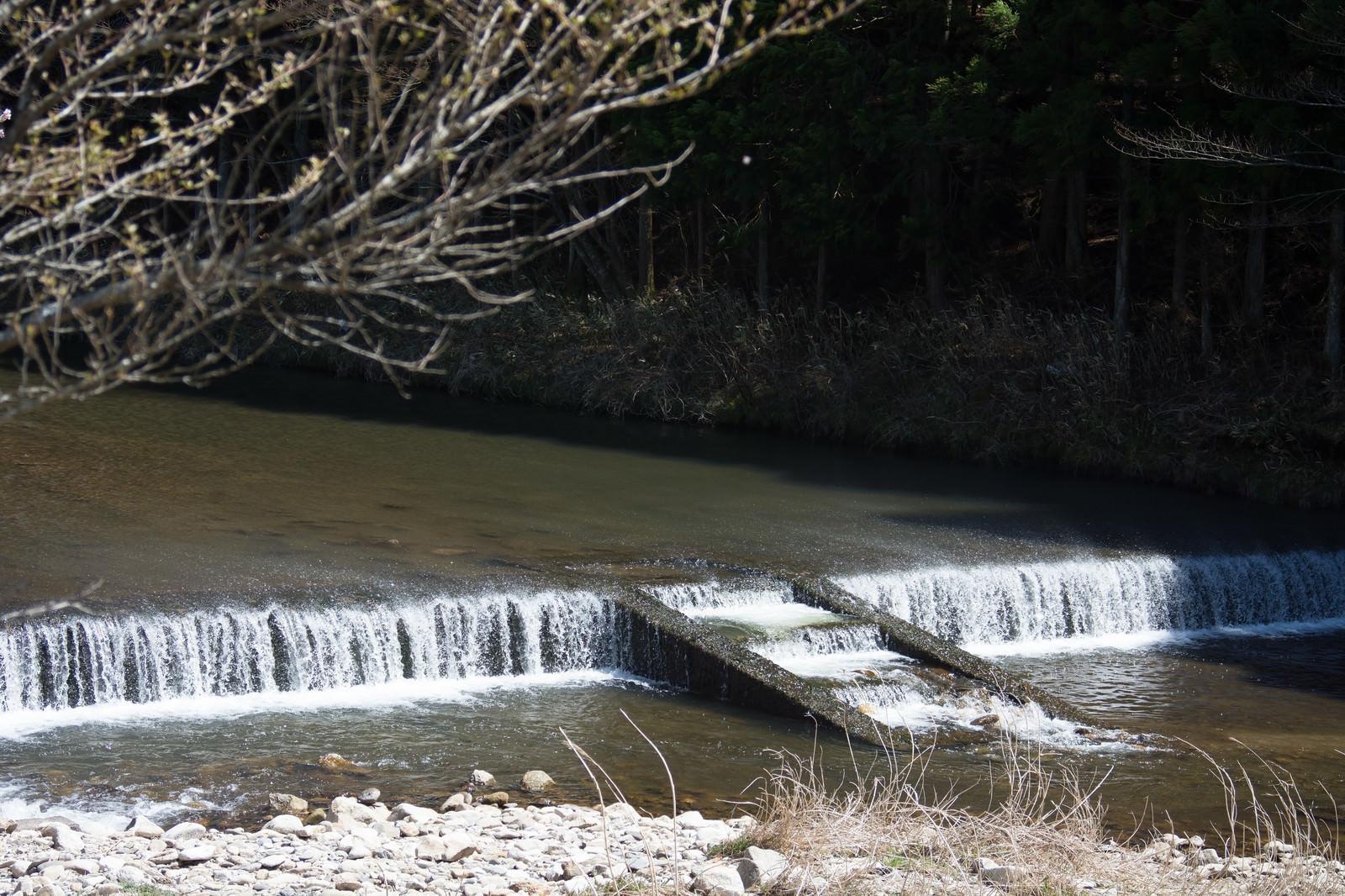 「名倉川の段差」の写真