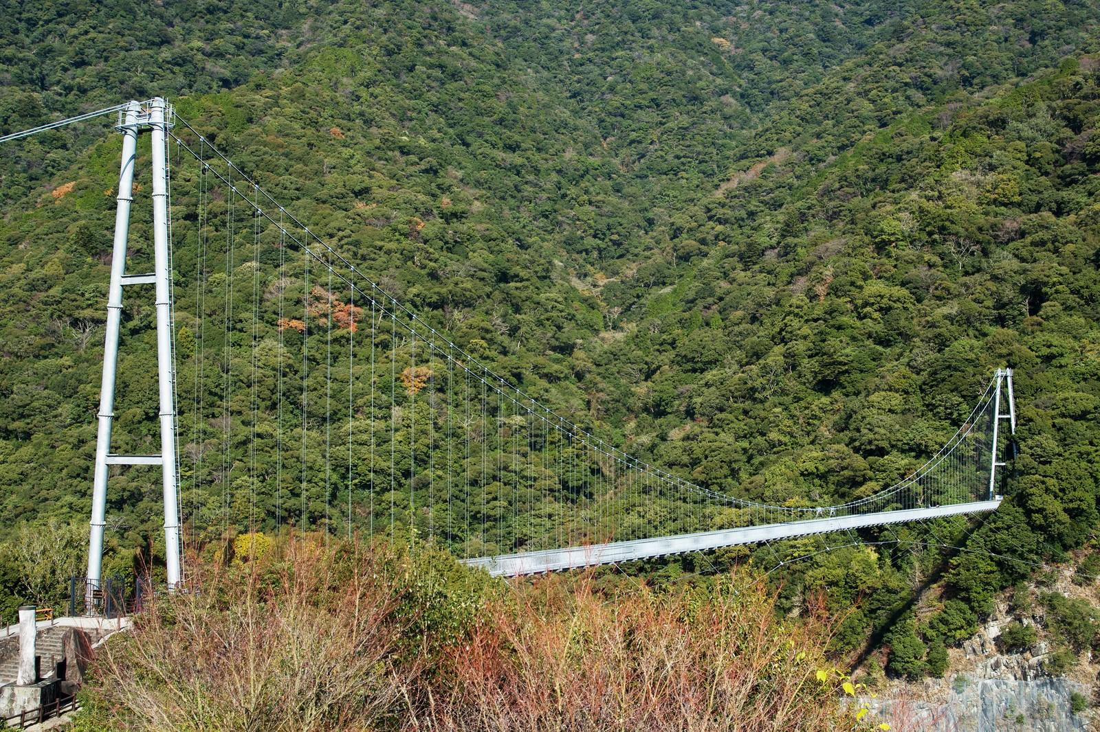 「照葉大吊橋(宮崎県東諸県郡綾町)」の写真