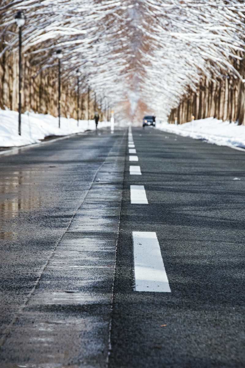 「車道に埋め込まれた消雪パイプ とセンターライン(マキノ高原)」の写真