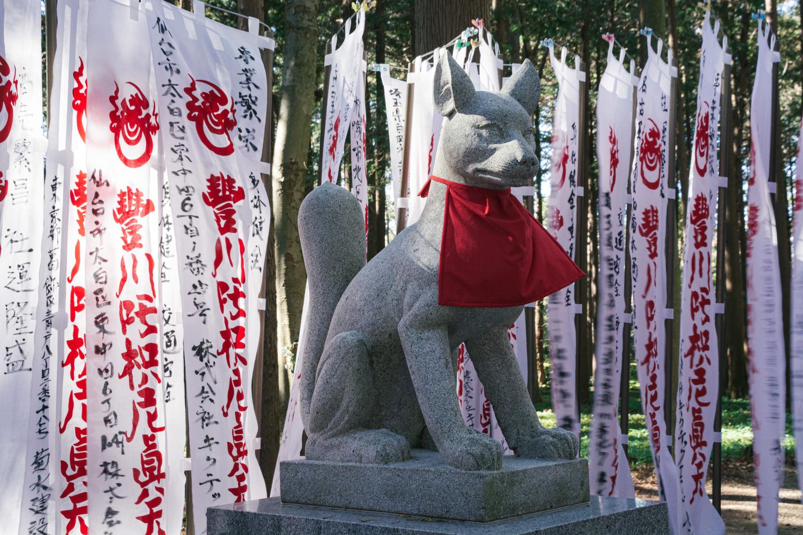 「奉納された幟に囲まれた狐の像」の写真