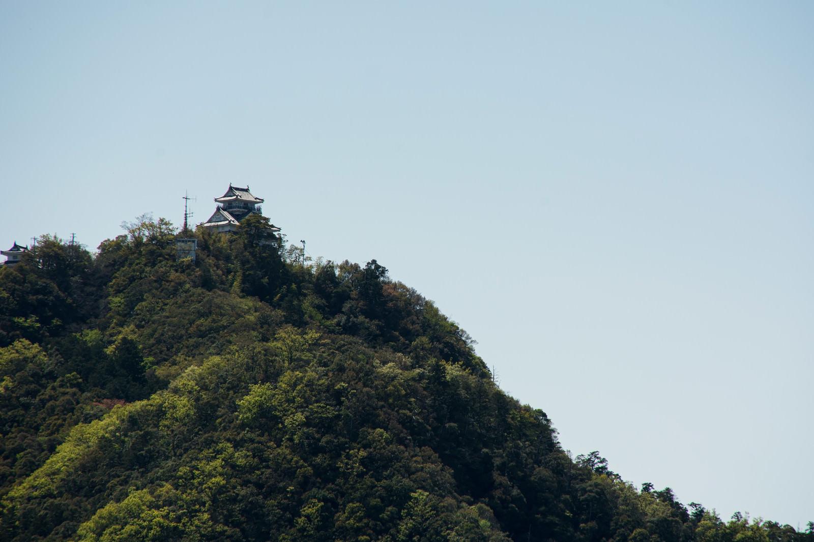「金華山の上に建つ岐阜城」の写真
