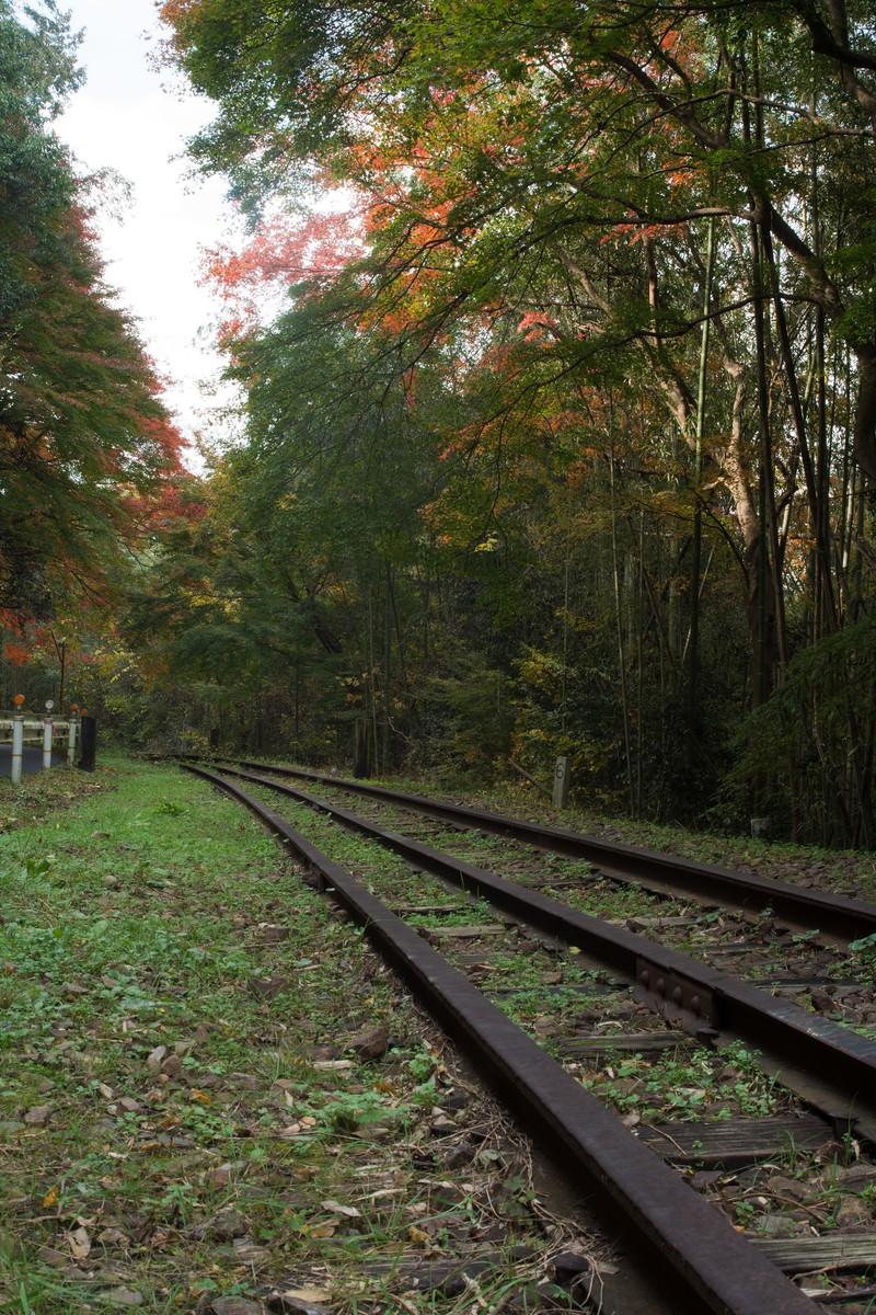 「初秋の紅葉と錆びついた線路」の写真