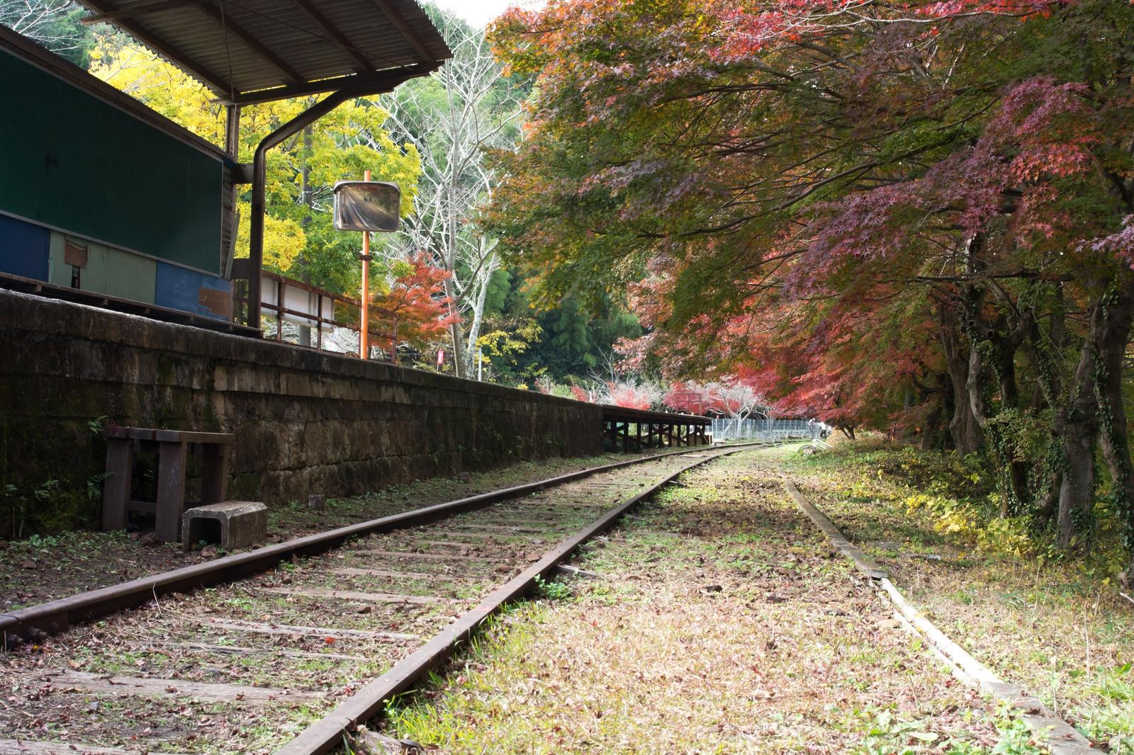 「使われなくなった無人の廃駅」の写真
